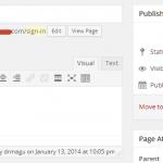Using WordPress for Simple Websites - Admin Access Plugin